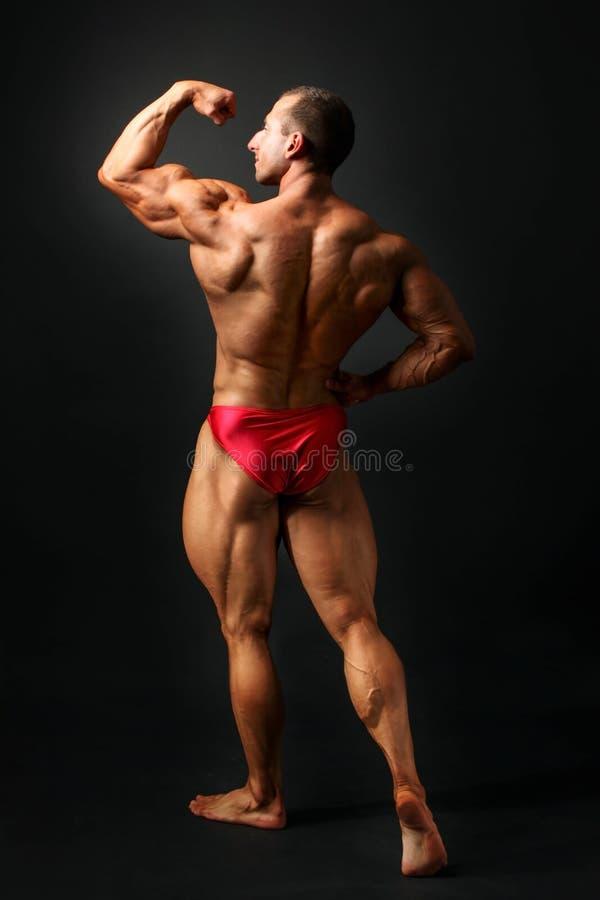 Studioskottet av den unga manliga kroppsbyggaren poserar på svart bakgrund, royaltyfria bilder