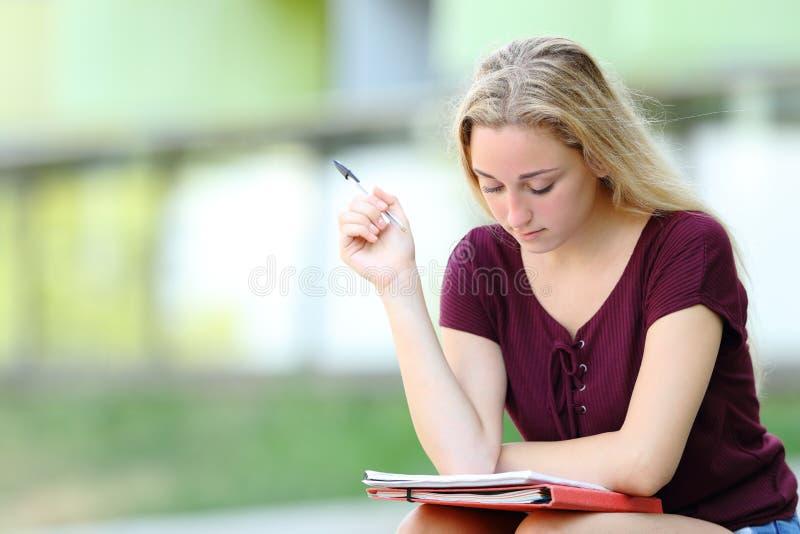 Studious student studying memorizing notes stock image