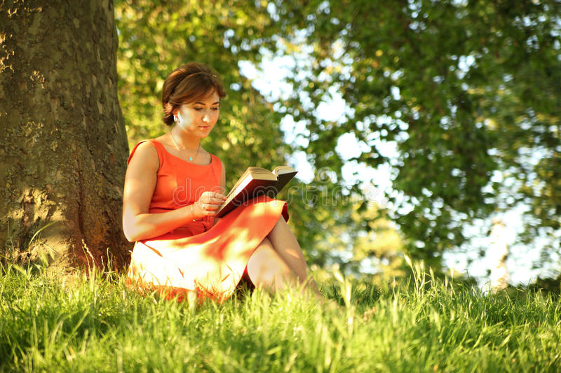 Download Study stock photo. Image of book, leisure, long, learning - 26303886