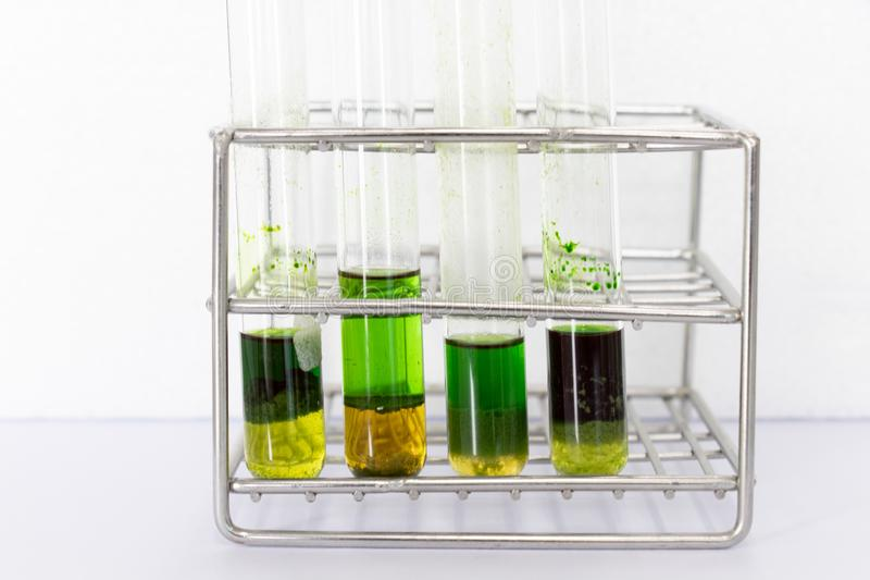 Chromatography is used to separate components of a plant. Study of Chromatography is used to separate components of a plant stock images
