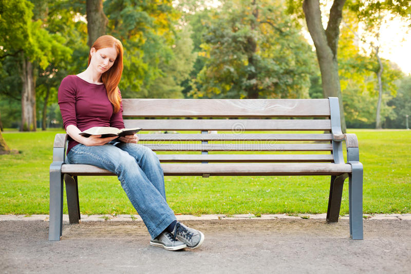 Studying the Bible in a Park royalty free stock image