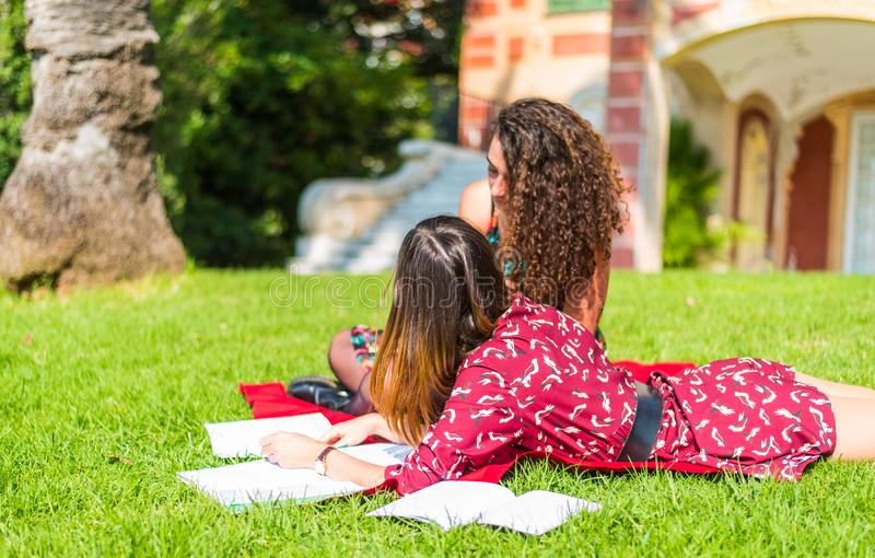 Studying in the park with friends royalty free stock images