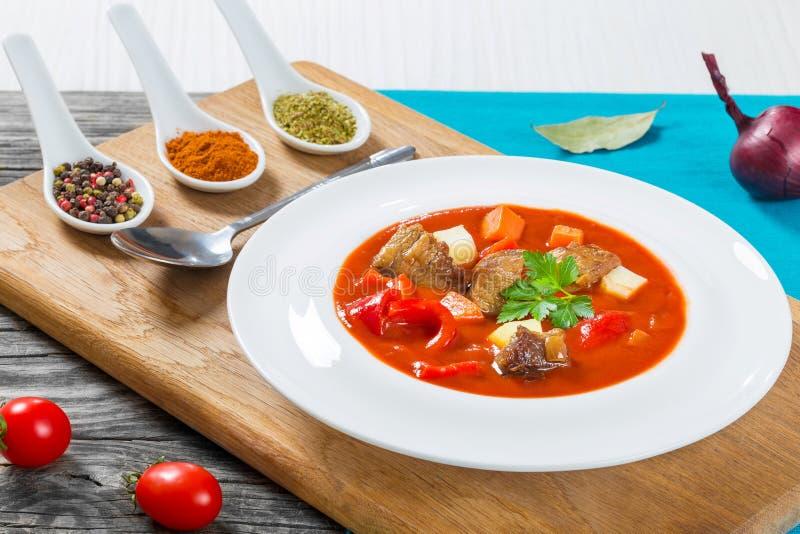 Stufato di manzo con le verdure, goulash, ungherese tradizionale mea immagine stock