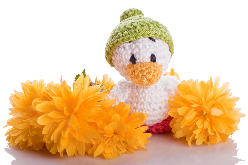 Stuffed animal. Duck chicks with yellow flowers royalty free stock images