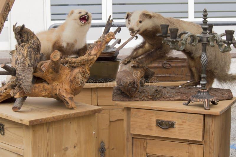Stuffed animals seen on flea market. Italian flea market presents small stuffed animals stock photos