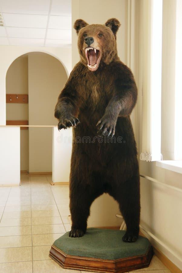 Download Stuffed Bear Royalty Free Stock Photos - Image: 6267888