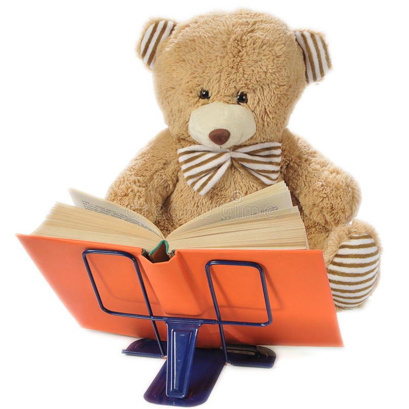 Stuffed bear reading a book