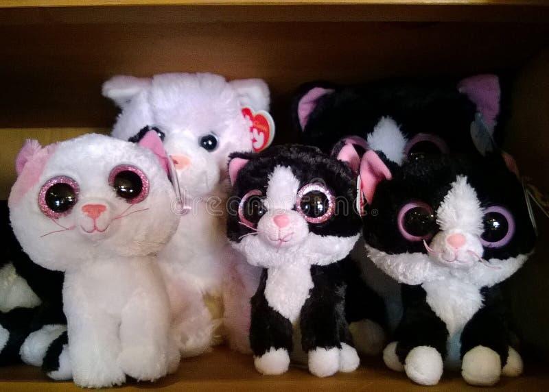 Stuffed big-eyed cats royalty free stock photos