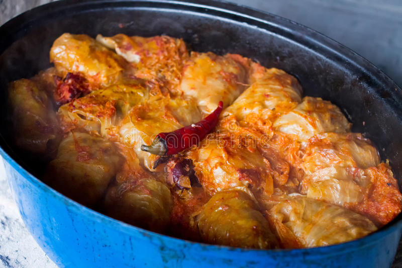 Stuffed cabbage leaf, traditional hungarian food stock photo
