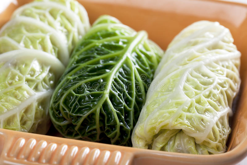Stuffed Cabbage Leaves stock photo