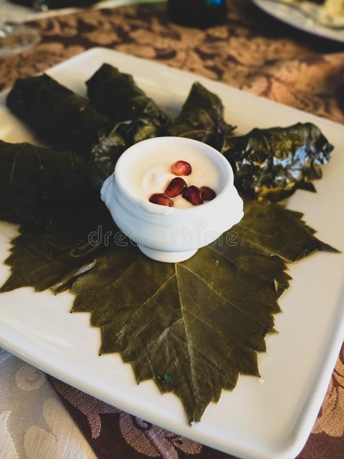 Stuffed delicious Dolma with sauce , pomegranate seeds, selective focus royalty free stock photography