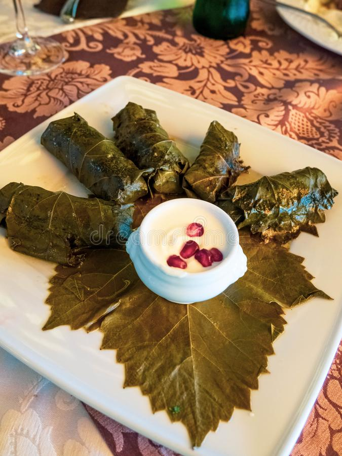 Stuffed delicious Dolma with sauce , pomegranate seeds, selective focus royalty free stock photos