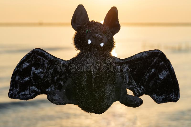 Stuffed funny Black Bat toy at the sunrise in front of the lake. A Symbol of Rebirth. Guardian of the Night.  stock images
