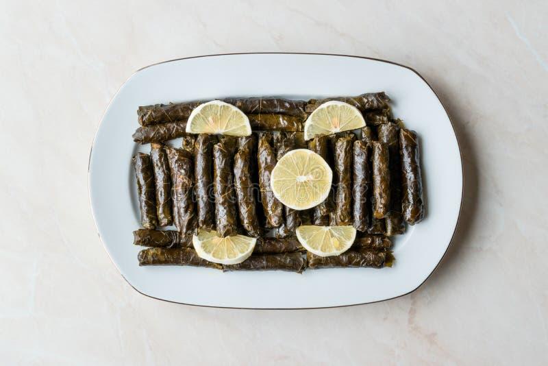 Stuffed Grape leaves with olive oil and Lemon / Zeytinyagli Yaprak Sarma Dolma. Traditional Organic Food royalty free stock photography