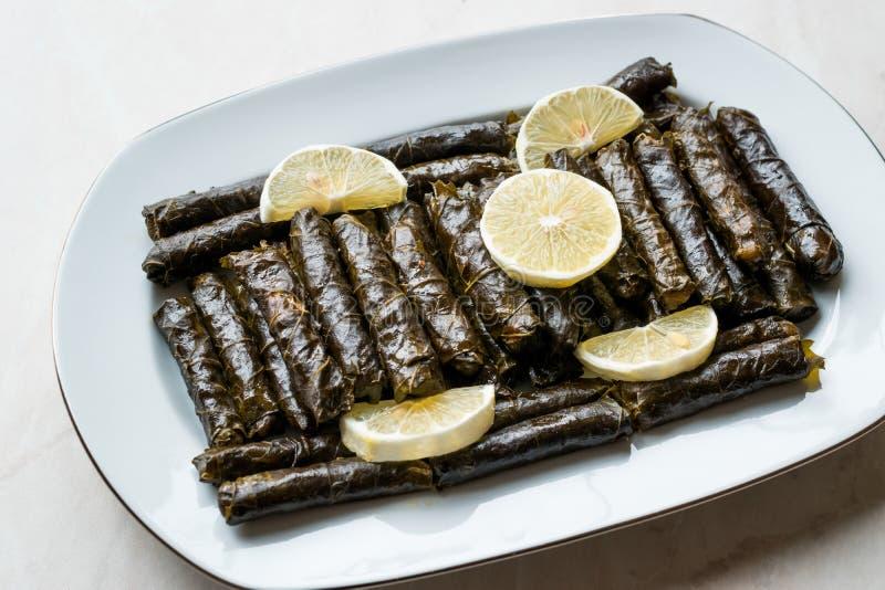 Stuffed Grape leaves with olive oil and Lemon / Zeytinyagli Yaprak Sarma Dolma. Traditional Organic Food stock photo