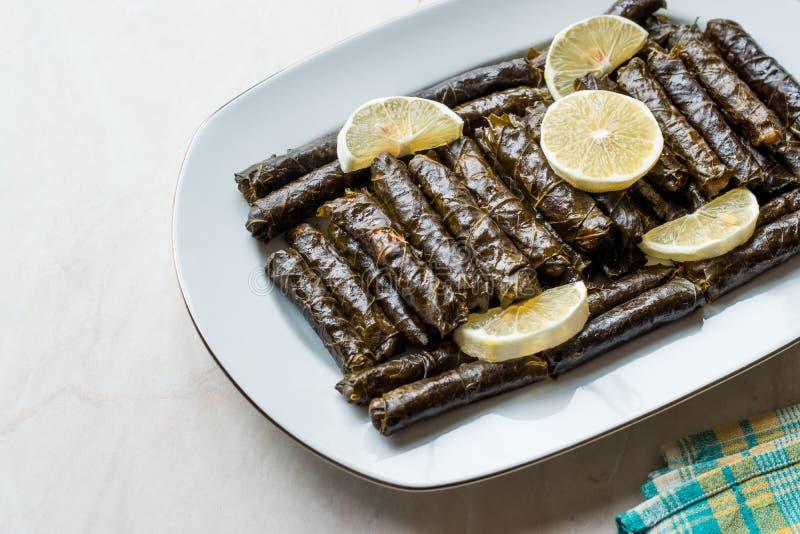 Stuffed Grape leaves with olive oil and Lemon / Zeytinyagli Yaprak Sarma Dolma. Traditional Organic Food royalty free stock photo