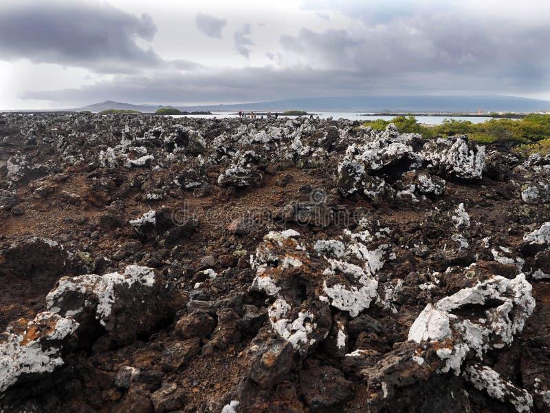 Stuffed lava on island Islote Tintoreras commemorates the moonland, Galapagos, Ecuador stock images