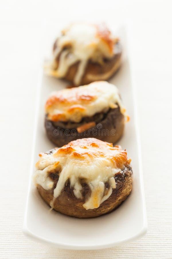 Stuffed mushrooms. Three delicious stuffed mushrooms royalty free stock photography