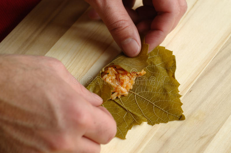Stuffed leaves royalty free stock images