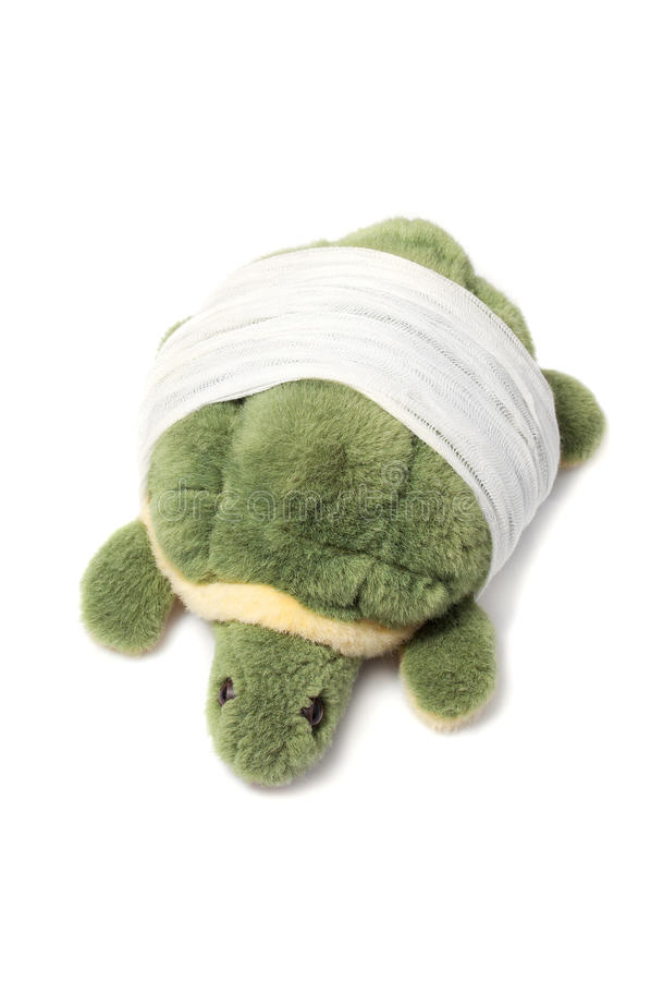 Stuffed turtle with his shell bandaged, isolated stock photography