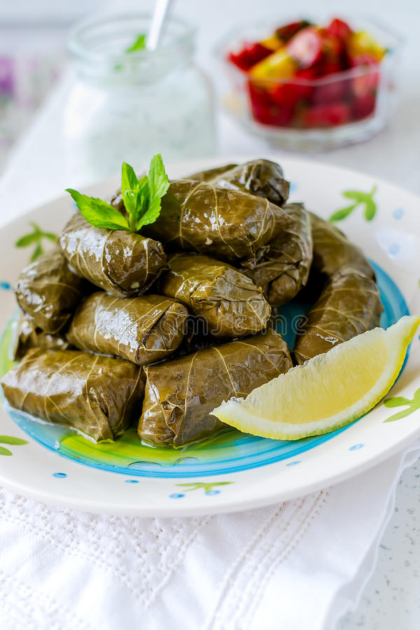 Free Stuffed Vine Leaves Stock Photos - 57134233