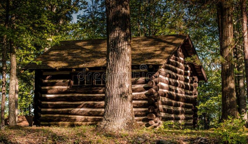 Stuga i en skog på soluppgång i lantliga Pennsylvania royaltyfri fotografi