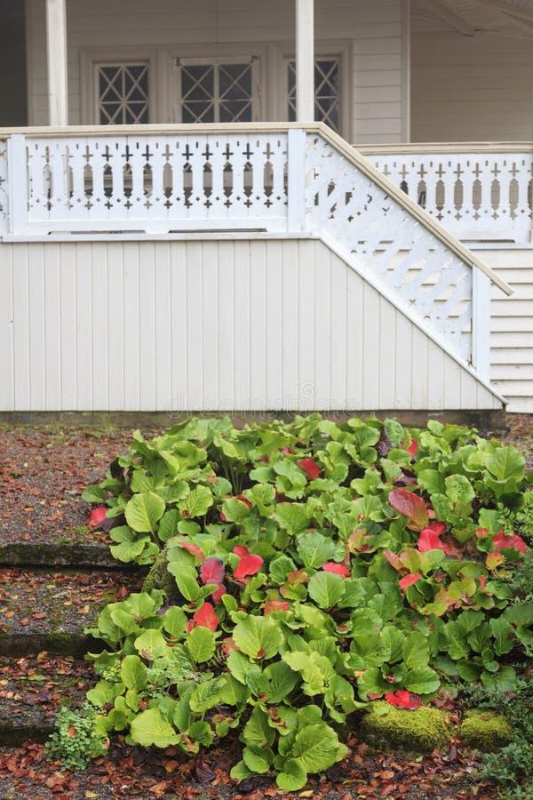 Stuga med en veranda fotografering för bildbyråer