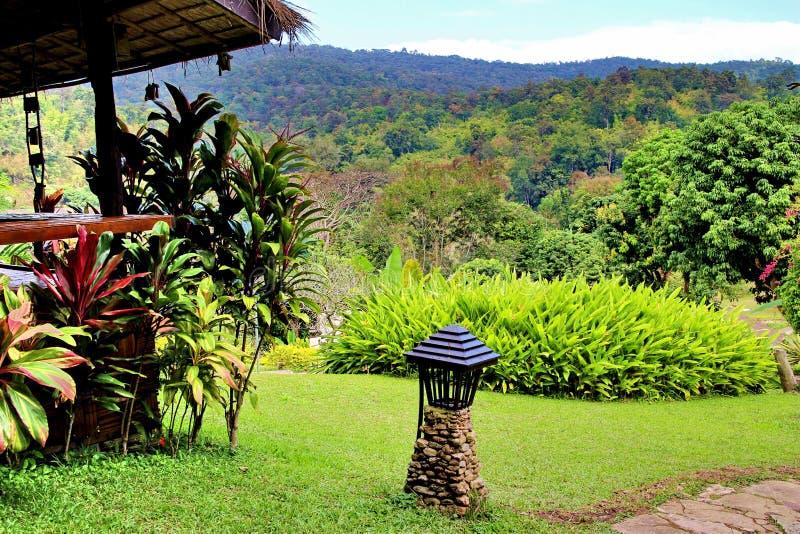 Stuga med trädgårds- främst och sikt av berget royaltyfri fotografi