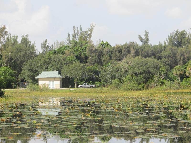 Stugan och lastbilen i en Florida natur parkerar arkivfoton