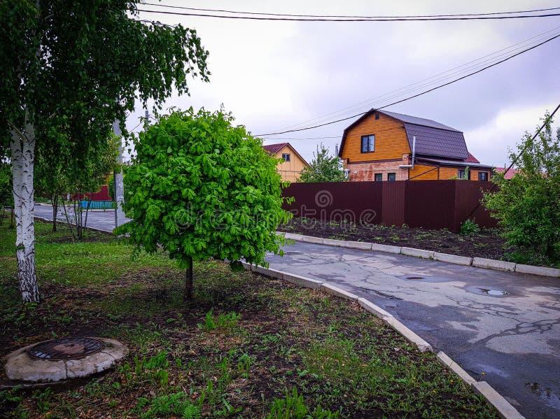 Stugbystugor, träd, hus, gränd fotografering för bildbyråer
