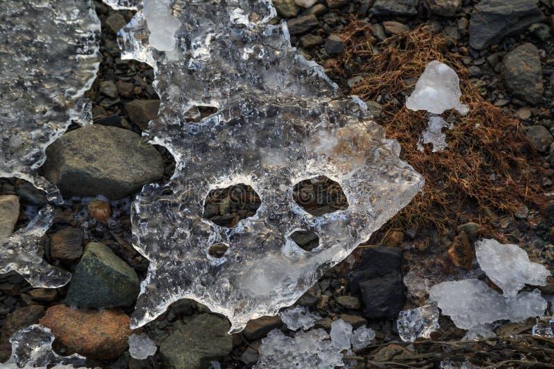 Stuk die van ijs op het hoofd van een slang lijken royalty-vrije stock fotografie