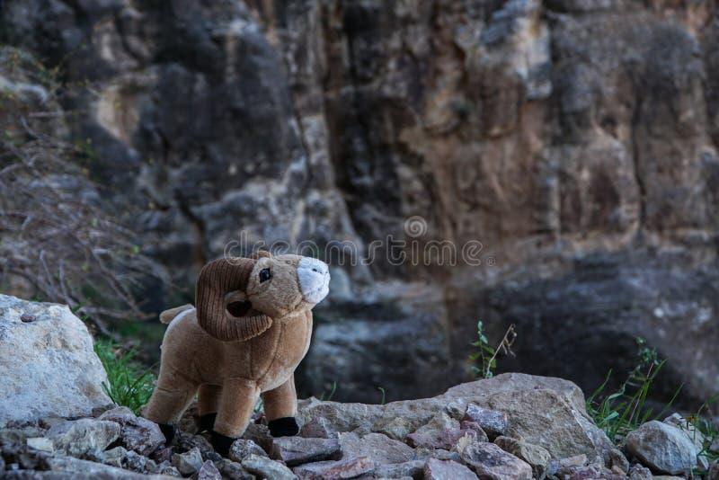Stuk speelgoed bighorn schapenram met grote hoornen op Grand Canyon -Klippen royalty-vrije stock foto's