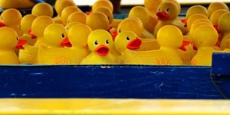 Stuk speelgoed eenden royalty-vrije stock fotografie