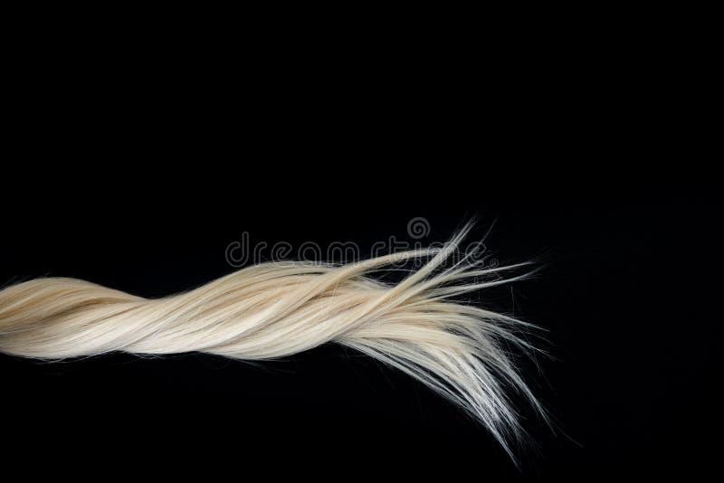 Stuk van blonde glanzende haartextuur op zwarte stock fotografie
