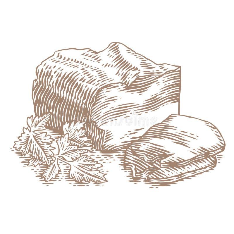 Stuk van borststuk met plak en peterselie stock illustratie