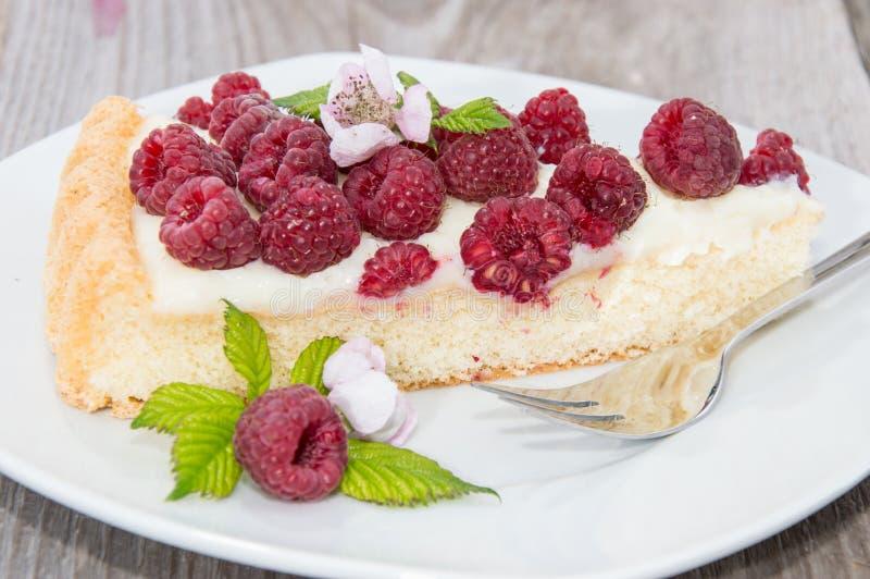 Stuk van de Cake van de Framboos stock foto's