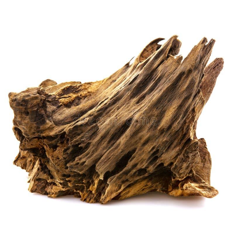 Stuk van goed versleten drijfhout royalty-vrije stock foto