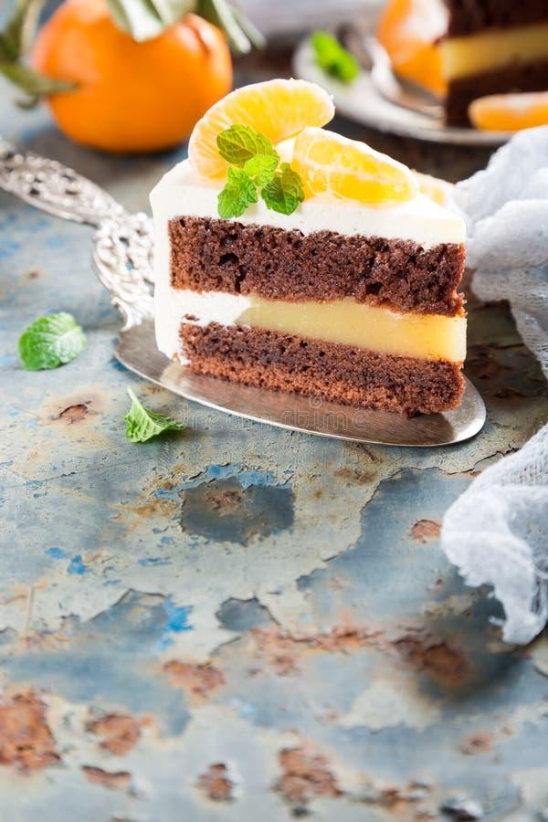 Stuk van heerlijke chocoladecake stock fotografie