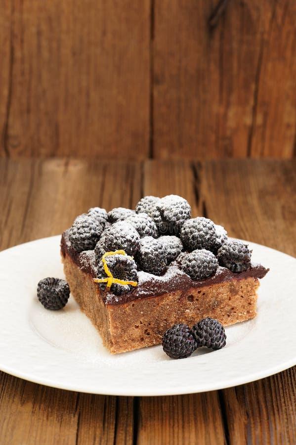 Stuk van heerlijke eigengemaakte chocoladepastei met ganache, verse bl stock fotografie