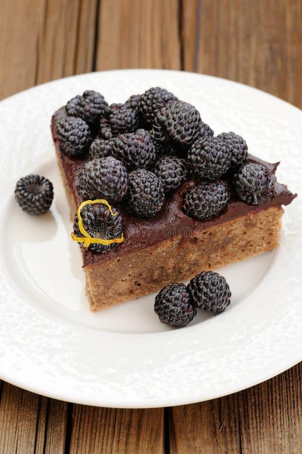 Stuk van smakelijke die chocoladepastei met ganache, met vers wordt verfraaid stock afbeeldingen