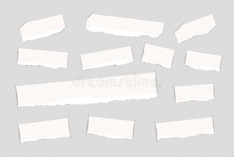 Stukken van gescheurd wit beslist die notavoorbeeldenboek, notitieboekjestroken in geregeld besnoeiingsdocument worden opgenomen royalty-vrije illustratie