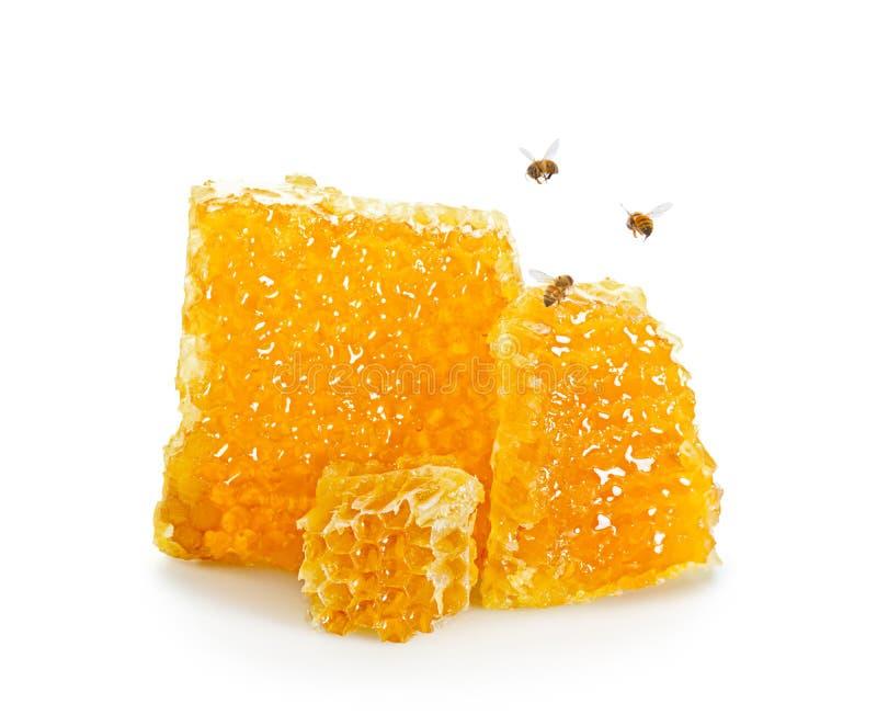Stukken van Honingraat met Bijen die rond op Witte Achtergrond vliegen stock foto's