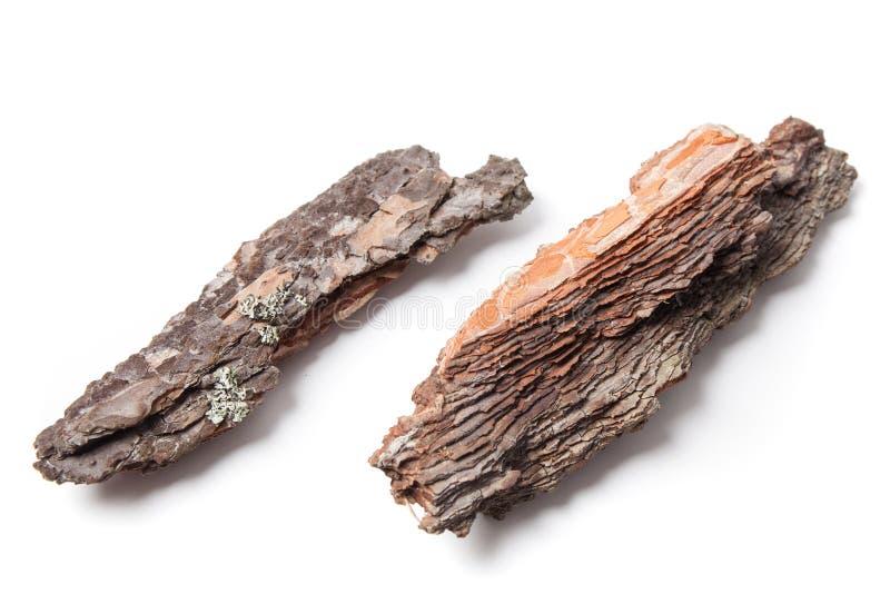 Stukken van pijnboomschors stock afbeelding