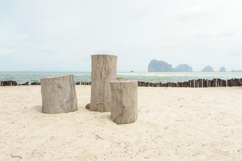 The stump. On the sandstone stock photography