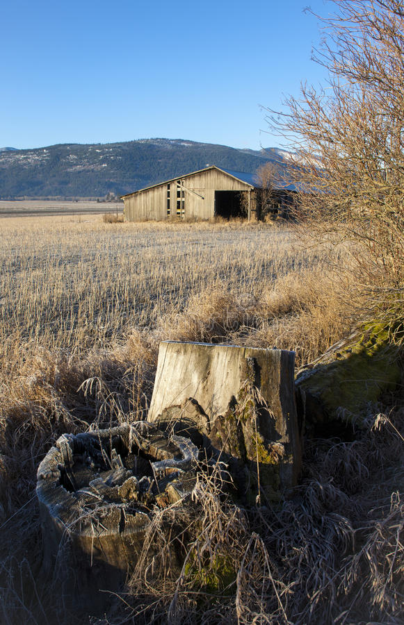 Stumpf und Scheune auf dem Gebiet. stockfotos