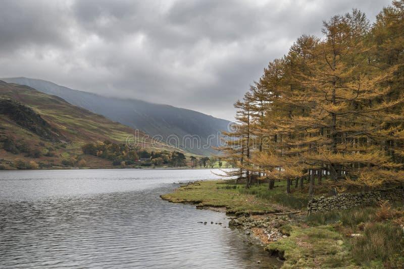 Stuning Autumn Fall landskapbild av sjön Buttermere i sjö D royaltyfri bild