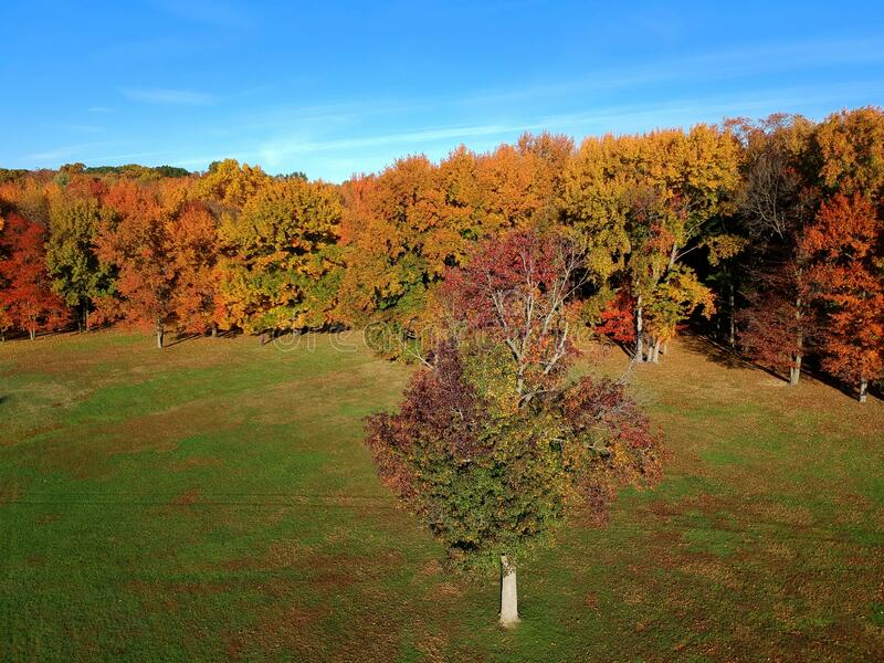 Stunning aerial view of fall foliage near Wilmington, Delaware, U.S.A stock image