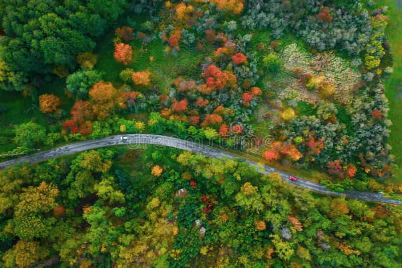 Stunning aerial view of road with cars between colorful autumn forest. royalty free stock image