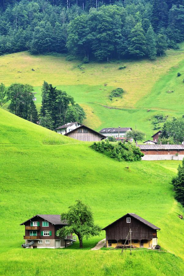 Stunning alpine landscape in canton Uri, Switzerland stock photography