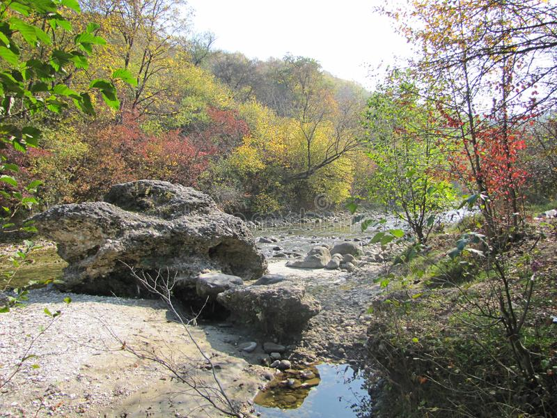 Stunning autumn landscape with a large stone on the river river among the forest royalty free stock image